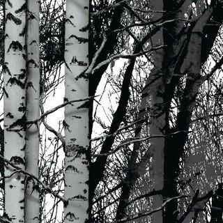 Декоративно фолио - дърво /45см./
